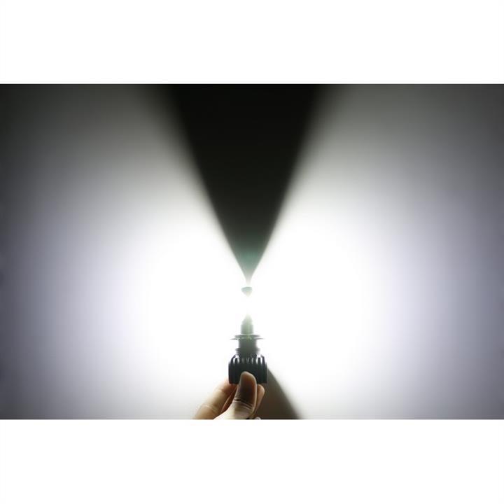 Лампы светодиодные комплект Carlamp Night Vision H7 12V 25W 5000K (2 шт.) Carlamp NVH7 - фото 5