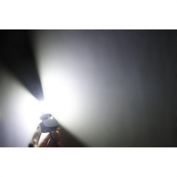 Лампы светодиодные комплект Carlamp Night Vision H7 12V 25W 5000K (2 шт.) Carlamp NVH7 - фото 10